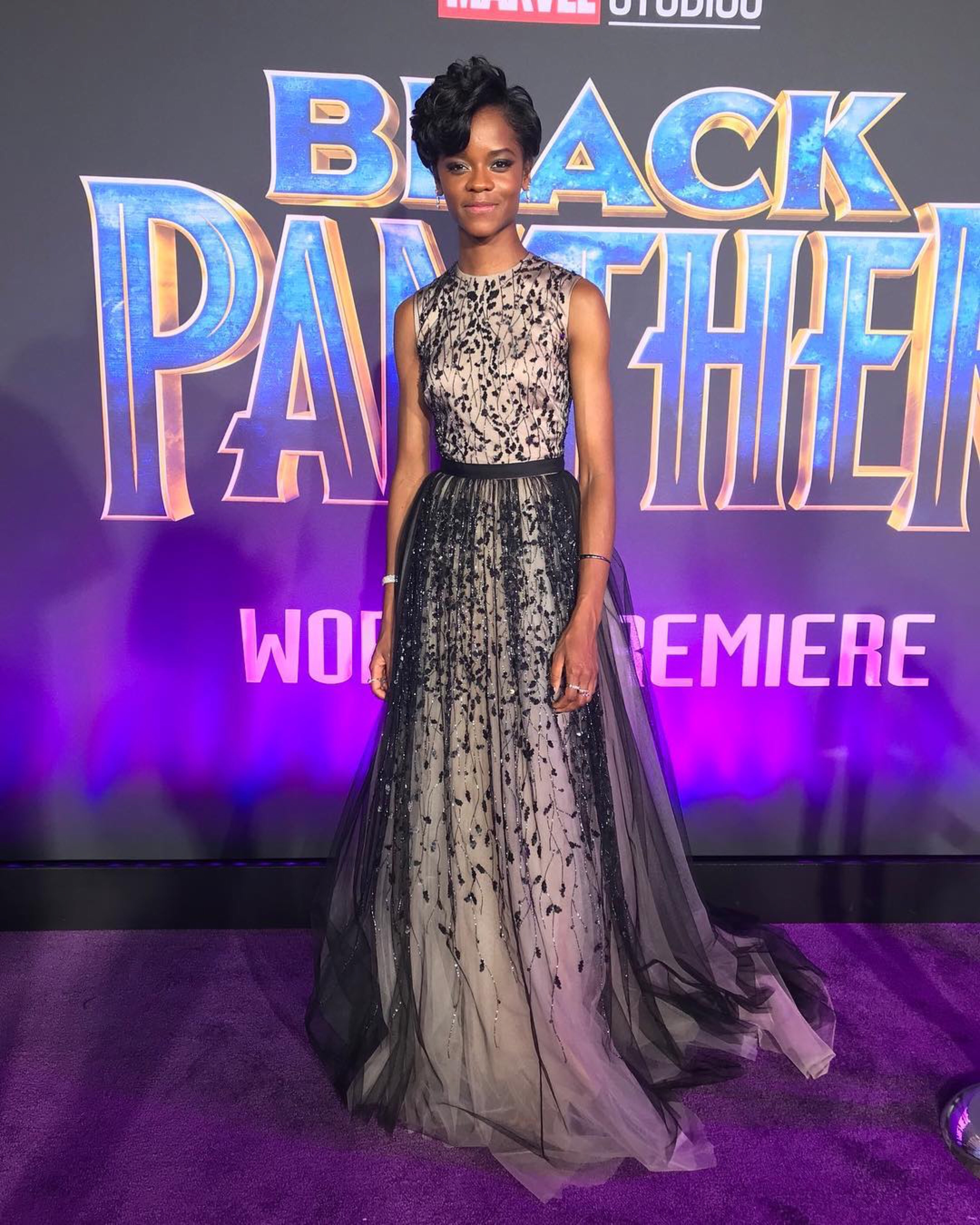 Last Night Was The Black Panther Premiere And It Was: Black Panther Premiere
